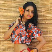 enchanting eshani diana jayapala